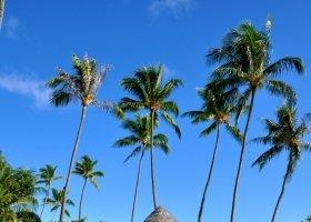 polynesie-hotel-le-tahaa-private-island-027.jpg
