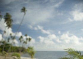 polynesie-hotel-raiatea-opoa-beach-012.jpg