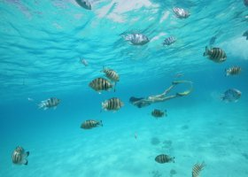 polynesie-hotel-sofitel-bora-bora-private-island-006.jpg
