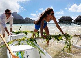 polynesie-hotel-sofitel-bora-bora-private-island-066.jpg