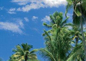 polynesie-hotel-sofitel-ia-ora-beach-resort-014.jpg