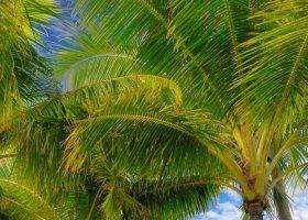 polynesie-hotel-st-regis-bora-bora-018.jpg