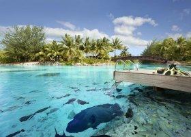 polynesie-hotel-st-regis-bora-bora-080.jpg