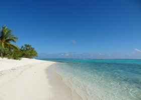 polynesie-hotel-the-brando-014.jpg