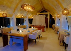 polynesie-hotel-the-brando-117.jpg
