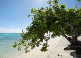 polynesie-hotel-the-brando-122.jpg