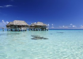 polynesie-hotel-tikehau-pearl-beach-resort-094.jpg