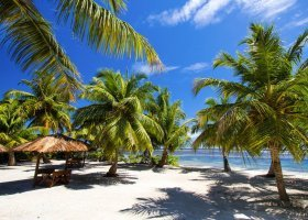 seychely-hotel-alphonse-island-067.jpg