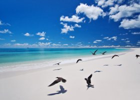seychely-hotel-bird-island-058.jpg