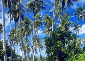 seychely-hotel-fregate-island-resort-076.jpg