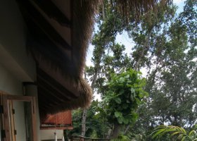 seychely-hotel-le-domaine-orangeraie-034.jpg