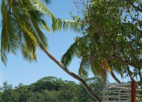 seychely-hotel-le-meridien-barbarons-032.jpg
