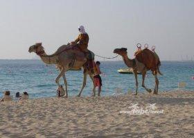 spojene-arabske-emiraty-cerven-2009-013.jpg