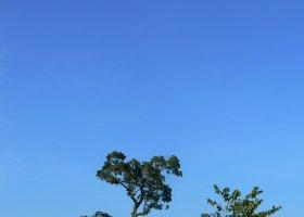sri-lanka-duben-a-kveten-2012-015.jpg