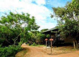 sri-lanka-hotel-chaaya-wild-013.jpg