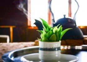 sri-lanka-hotel-heritance-tea-factory-023.jpg