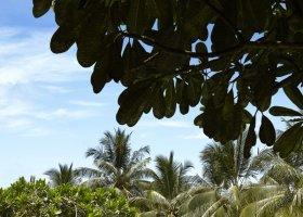 sri-lanka-hotel-jetwing-beach-082.jpg