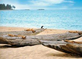 sri-lanka-hotel-maalu-maalu-resort-023.jpg