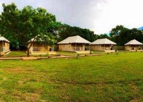 sri-lanka-hotel-rangiri-dambulla-resort-009.jpg
