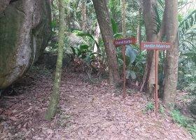 svatebni-cesta-seychely-003.jpg