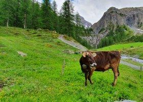 svycarsko-27-06-02-07-2021-international-luxury-fam-trip-071.jpg