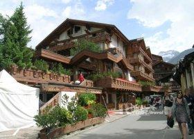svycarsko-cervenec-2009-005.jpg