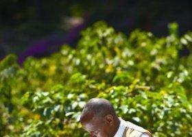tanzanie-hotel-arusha-coffee-lodge-010.jpg