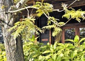 tanzanie-hotel-arusha-coffee-lodge-015.jpg