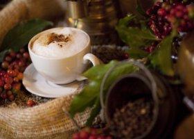 tanzanie-hotel-arusha-coffee-lodge-020.jpg