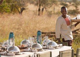 tanzanie-hotel-four-seasons-serengeti-036.jpeg