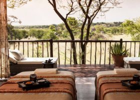 tanzanie-hotel-four-seasons-serengeti-041.jpeg