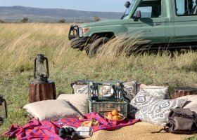 tanzanie-hotel-melia-serengeti-lodge-040.jpg