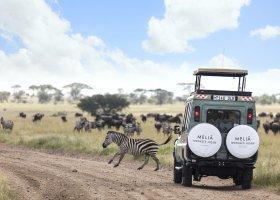 tanzanie-hotel-melia-serengeti-lodge-140.jpg