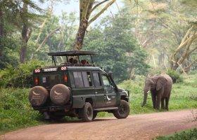 tanzanie-hotel-ngorongoro-crater-lodge-007.jpg