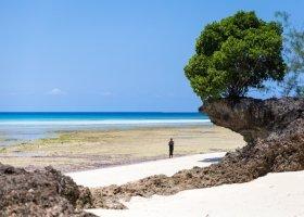 tanzanie-hotel-sandies-baobab-019.jpg