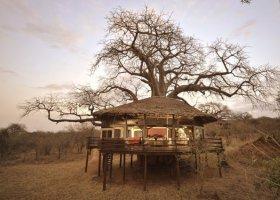 tanzanie-hotel-tarangire-treetops-002.jpg