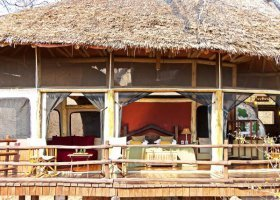 tanzanie-hotel-tarangire-treetops-008.jpg