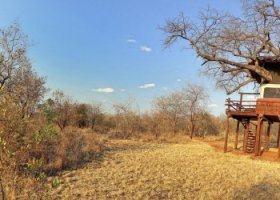 tanzanie-hotel-tarangire-treetops-019.jpg