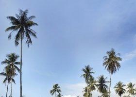 thajsko-hotel-anantara-phuket-villas-204.jpg
