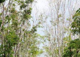 thajsko-hotel-vijitt-resort-phuket-016.jpg