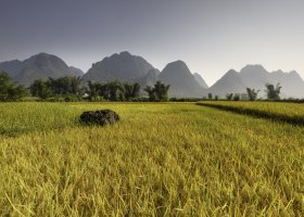 vietnam-036.jpg