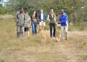 zambie-hotel-david-livingstone-safari-lodge-014.jpg