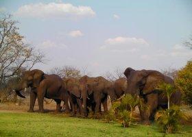 zambie-hotel-david-livingstone-safari-lodge-015.jpg