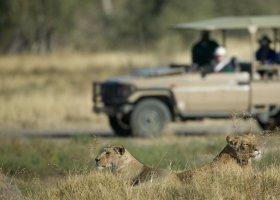 zambie-hotel-royal-chundu-zambezi-004.jpg