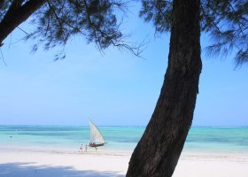 zanzibar-hotel-bluebay-beach-resort-spa-207.jpg