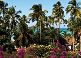 zanzibar-hotel-diamonds-mapenzi-beach-186.jpg