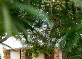zanzibar-hotel-sandies-baobab-159.jpg