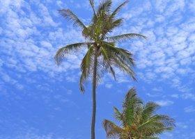 zanzibar-hotel-the-palms-033.jpg