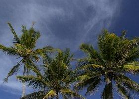 zanzibar-hotel-the-palms-099.jpg