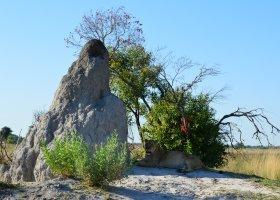 zimbabwe-a-botswana-dve-perly-v-africe-008.jpg